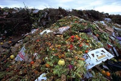 Think. Eat. Save. Al via campagna mondiale per ridurre i 1,3 miliardi di tonnellate di cibo sprecati ogni anno