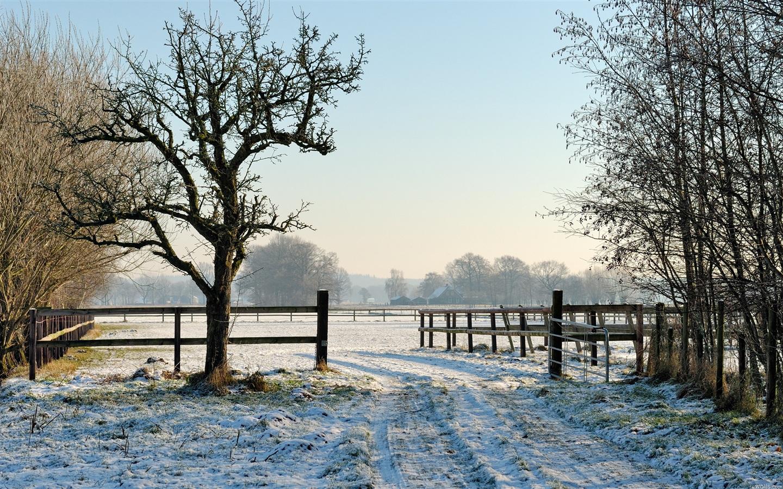 I lombrichi e le temperature ideali per l'allevamento