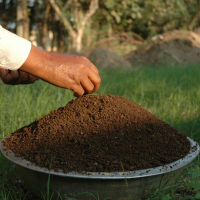 vermicompost-manure-828610