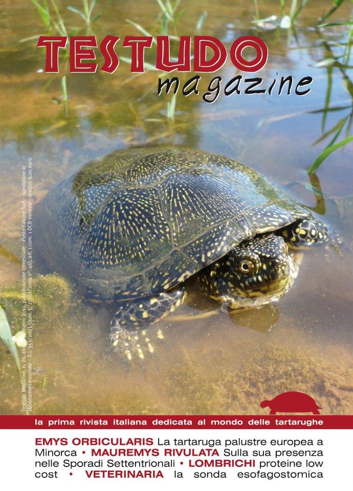 testudo-magazine