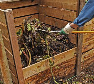 Ecco cosa tiene lontani i lombrichi dai cumuli del compostaggio