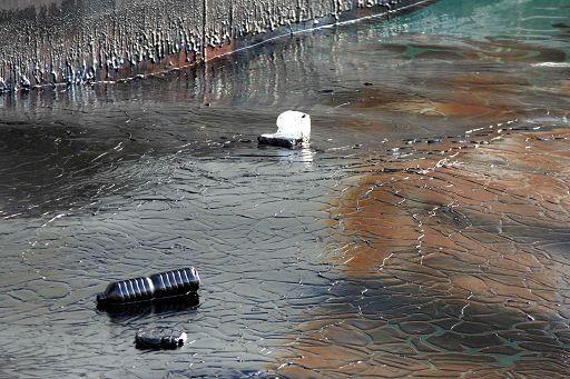 Ambiente/ Mare inquinato: male Calabria, Liguria e Campania