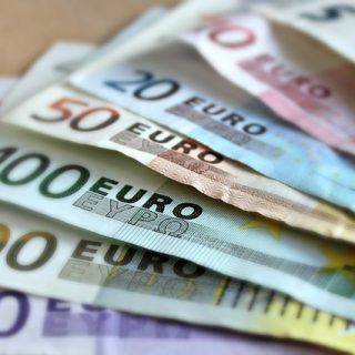 Lombricoltura: Peppe, se investo 2 mila euro dopo due anni ne guadagno 15 mila?