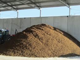 Lombricoltura, per un humus di lombrico di qualità il letame migliore è quello di…