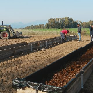 Lombricoltura, ecco come si diventa allevatore professionale